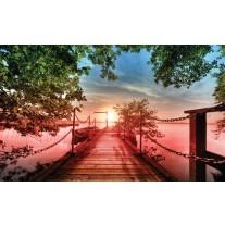Fotobehang Papier Natuur, Brug | Groen | 254x184cm