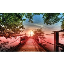 Fotobehang Papier Natuur, Brug | Groen | 368x254cm