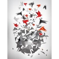 Fotobehang Papier Abstract, 3D | Grijs, Rood | 184x254cm