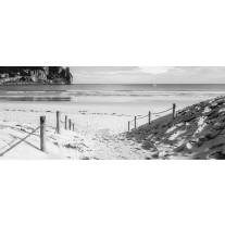 Fotobehang Strand, Zee | Grijs | 250x104cm