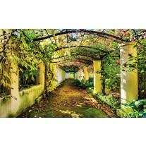 Fotobehang Papier Natuur | Groen, Geel | 254x184cm