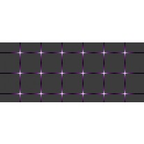 Fotobehang Design | Grijs, Paars | 250x104cm