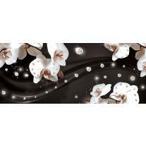 Fotobehang Orchideeën, Bloemen | Wit | 250x104cm