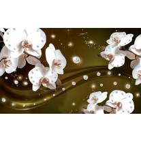Fotobehang Papier Orchideeën, Bloemen | Wit | 368x254cm