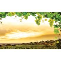 Fotobehang Papier Natuur | Geel, Groen | 254x184cm