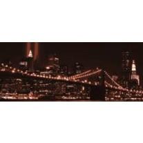 Fotobehang New York | Bruin | 250x104cm