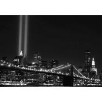 Fotobehang Papier New York | Zwart | 254x184cm