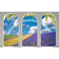 Fotobehang Papier Natuur, Regenboog | Blauw | 254x184cm