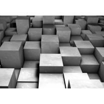 Fotobehang Papier 3D | Zilver | 254x184cm