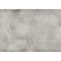 Fotobehang Klassiek | Grijs | 152,5x104cm