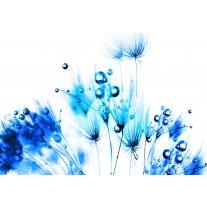 Fotobehang Papier Bloemen | Wit, Blauw | 254x184cm