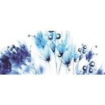 Fotobehang Bloemen | Wit, Blauw | 250x104cm