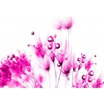 Fotobehang Papier Bloemen | Roze, Wit | 254x184cm