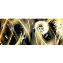 Fotobehang Paardenbloem, Abstract | Goud | 250x104cm