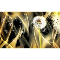 Fotobehang Paardenbloem, Abstract | Goud | 152,5x104cm