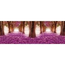 Fotobehang Vlies Bos | Roze, Paars | GROOT 832x254cm