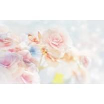 Fotobehang Papier Roos, Bloemen | Roze | 254x184cm