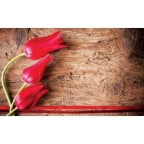 Fotobehang Papier Bloemen, Hout | Rood | 368x254cm