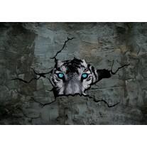 Fotobehang Papier 3D, Dieren | Grijs | 254x184cm