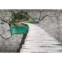 Fotobehang Papier 3D, Dieren | Grijs | 368x254cm