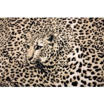 Fotobehang Papier Luipaard, Dieren | Bruin | 254x184cm