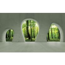 Fotobehang Papier Bos, Muur | Groen | 368x254cm