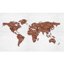 Fotobehang Papier Wereldkaart, Muur | Bruin | 254x184cm