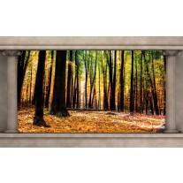 Fotobehang Papier Bos, Natuur | Bruin | 254x184cm