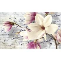Fotobehang Papier Bloemen, Magnolia | Crème | 368x254cm
