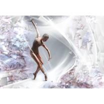 Fotobehang Papier Dansen, ballet | Zilver | 254x184cm