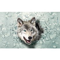 Fotobehang Papier Wolf, Muur | Grijs, Groen | 368x254cm