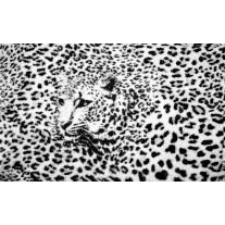 Fotobehang Papier Luipaard | Zwart, Wit | 254x184cm