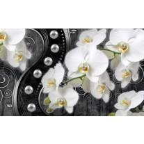 Fotobehang Papier Orchidee, Bloemen | Wit, Zwart | 254x184cm