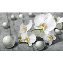 Fotobehang Papier Bloem, Orchidee | Grijs | 254x184cm