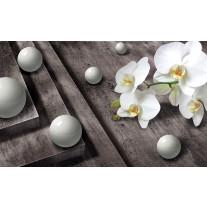 Fotobehang Papier 3D, Orchidee | Grijs | 254x184cm