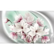 Fotobehang Magnolia, Bloemen | Zilver | 152,5x104cm