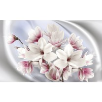 Fotobehang Papier Magnolia, Bloemen | Zilver | 368x254cm