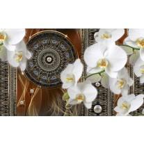 Fotobehang Papier Klassiek, Orchidee | Bruin | 254x184cm