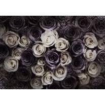 Fotobehang Papier Rozen, Bloemen | Crème | 254x184cm
