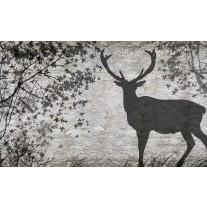 Fotobehang Papier Hert, Modern | Grijs | 254x184cm