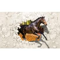 Fotobehang Papier Paard, Abstract | Bruin | 254x184cm