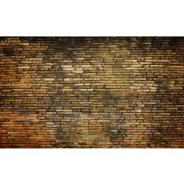 Fotobehang Papier Muur | Bruin | 254x184cm