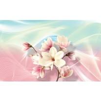 Fotobehang Papier Magnolia, Bloem | Roze | 368x254cm