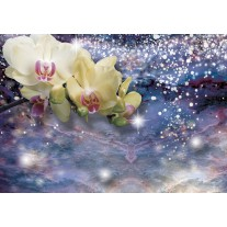 Fotobehang Papier Orchideeën, Modern | Blauw | 254x184cm