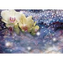 Fotobehang Orchideeën, Modern | Blauw | 152,5x104cm