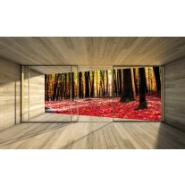 Fotobehang Bos, Modern | Rood | 152,5x104cm