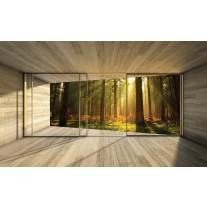 Fotobehang Bos, Modern | Bruin | 152,5x104cm