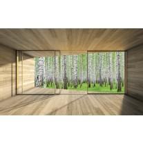 Fotobehang Bos | Groen, Wit | 152,5x104cm