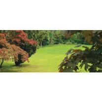 Fotobehang Natuur | Groen, Bruin | 250x104cm