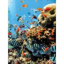 Fotobehang Zee   Blauw   206x275cm